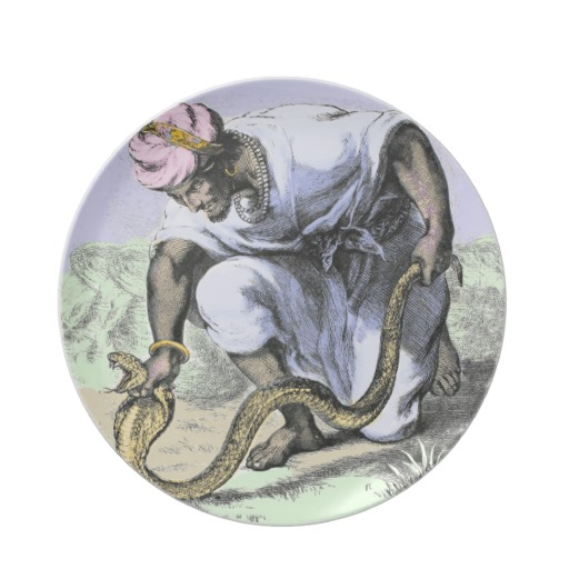 snakecatcher